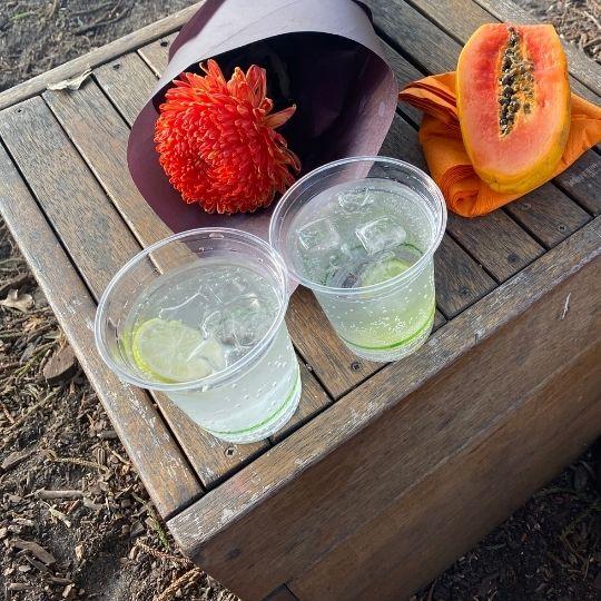 Seedlip mocktails at Busby's bar, Royal Botanic Garden, Sydney, NSW Australia